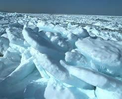 厳冬期の流氷