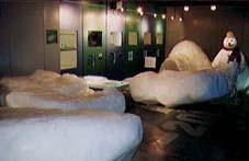 厳寒体験室