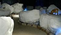 流氷とシバレ体験