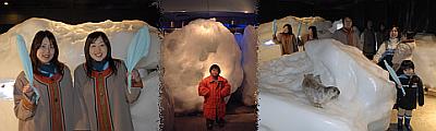流氷体験室の様子