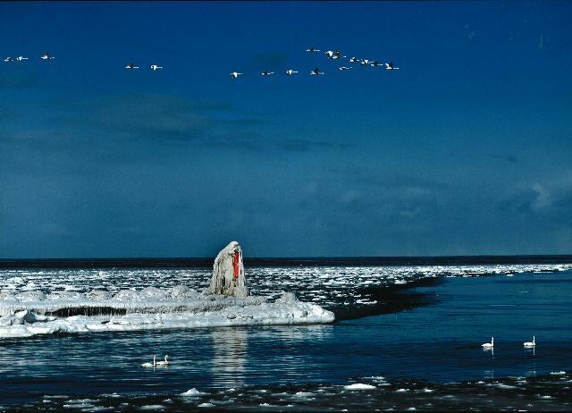 入選 「凍てつく灯台」