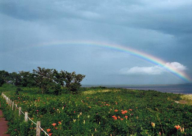 入選 「ユリと虹」